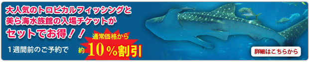 美ら海水族館入場券つきトロピカルフィッシング