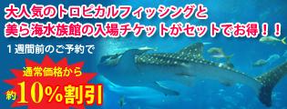 美ら海水族館のチケットがセットでお得!