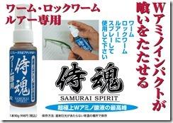 artcl03_spirit